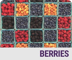 Berries Badge